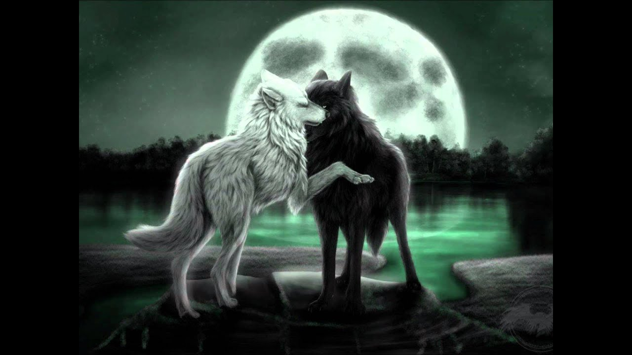 Two anime wolves in love