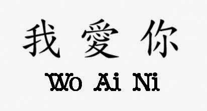 y You in chinese are